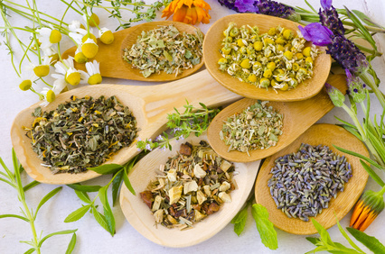 Pflanzliche Heilmittel