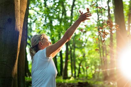 Waldtherapie macht munter