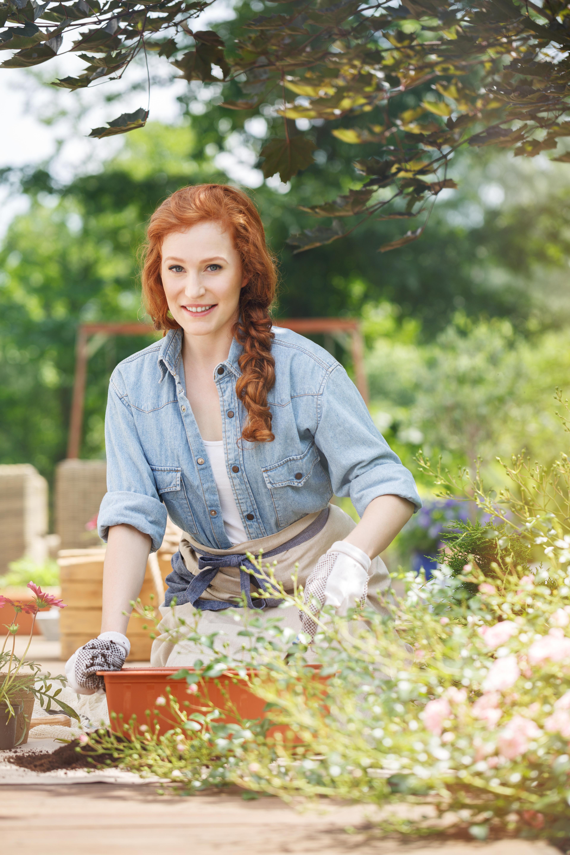 Gärtnern gegen Stress