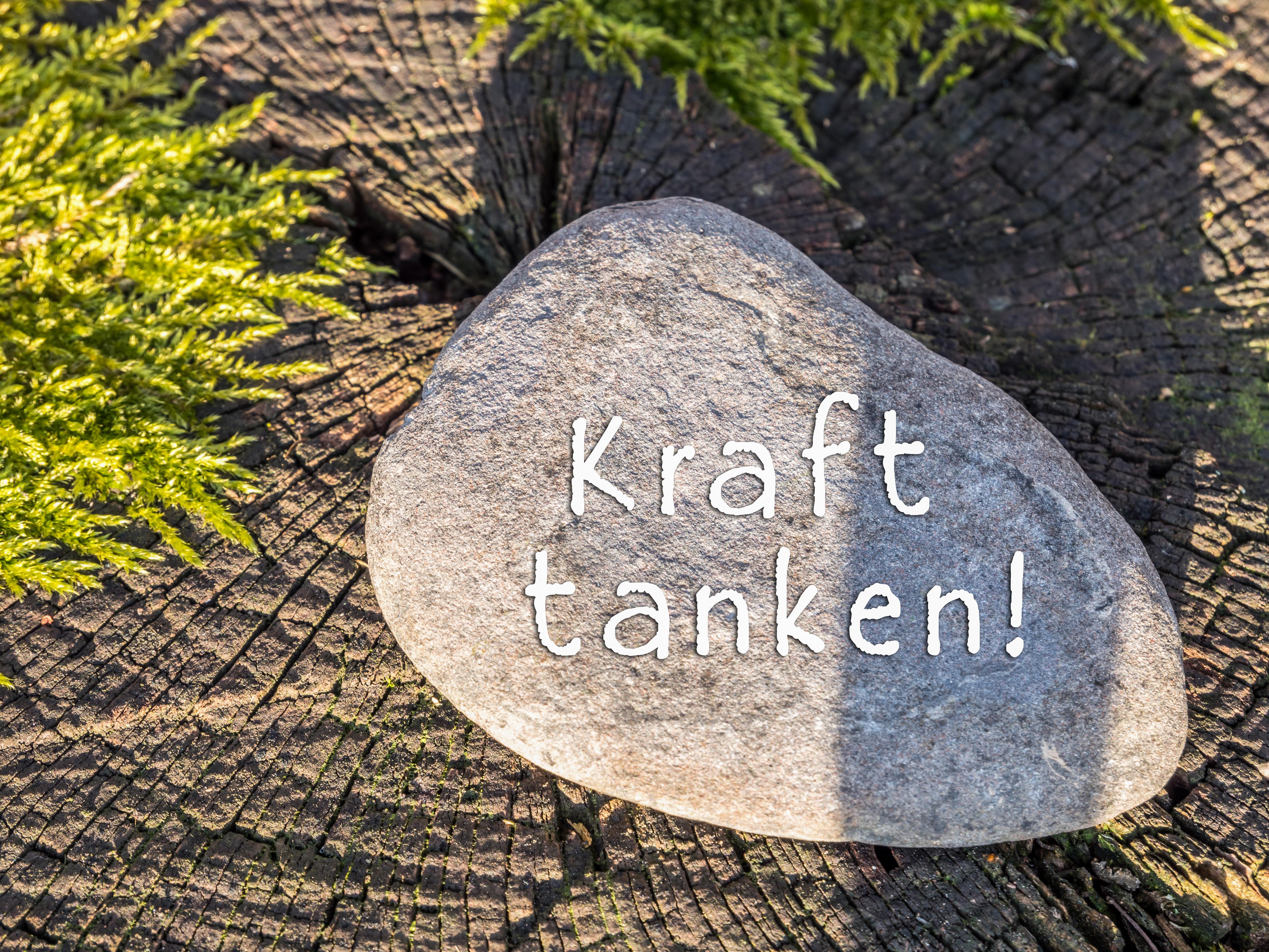 Stein auf Baumstamm Kraft tanken!