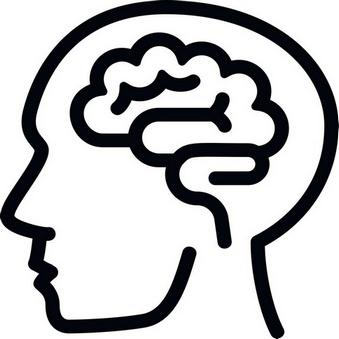Gehirn spielt zentrale Rolle im Konzept der Allostase