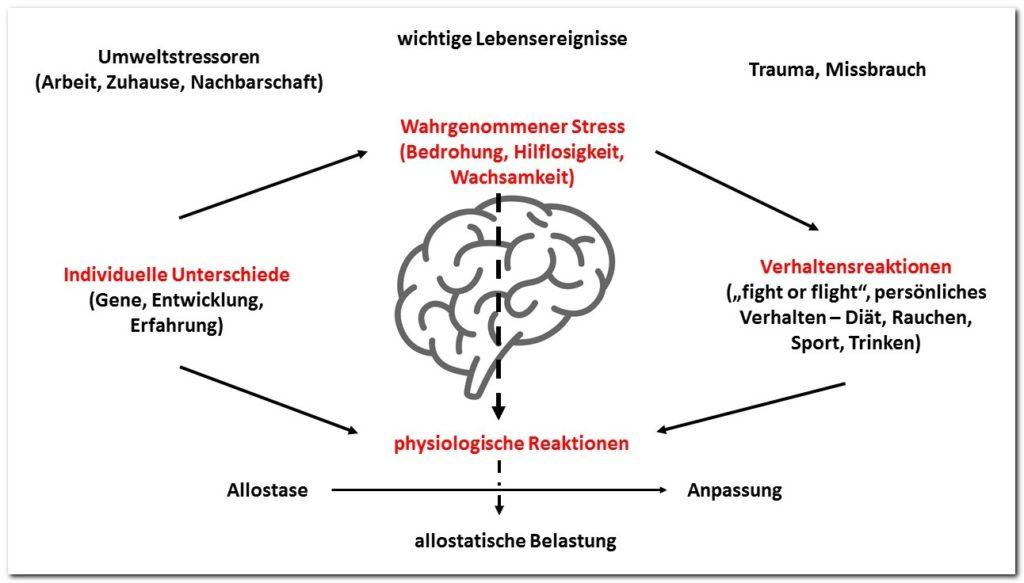 Allostatische Belastung